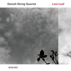Danish String Quartet Last Leaf Vinyl LP They are widely recognized as the most exciting young string quartet of the present moment, bringing new insights String Quartet, Double Bass, Folk Music, New Series, Vinyl, Leaves, Songs, Danish, Lp