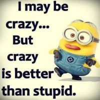 Top 40 Funny Minion Images