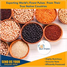 33 Best Beans, Pulses and Lentils images in 2018 | Lentils