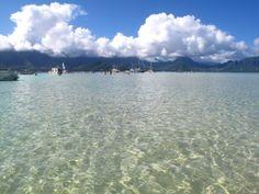 Kaneohe Bay Sailboats, Oahu Hawaii - Love windward Oahu!