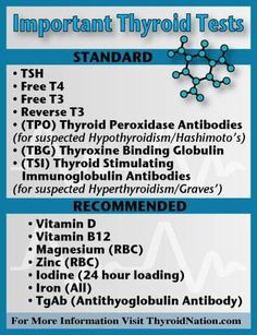 Important Thyroid Tests