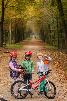 Bmx, Bicycle, Vehicles, Pictures, Bike, Bicycle Kick, Bicycles, Car, Vehicle