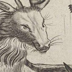 animals-Verzameld werk van Amy Lavine - Alle Rijksstudio's - Rijksstudio - Rijksmuseum