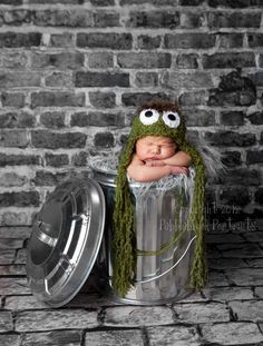 Cute Oscar The Grouch set up! Wish I knew how to crochet!