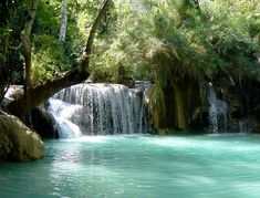 The Kuang Si waterfall - Laos