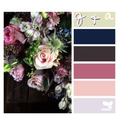 """""""{q&a • rate my account} // rtd :)"""" by kk-purpleprincess ❤ liked on Polyvore featuring art"""