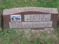 "Gravestone for ""Lassie"" famous canine television star of the Cemetery Monuments, Cemetery Headstones, Old Cemeteries, Graveyards, Pet Cemetery, Cemetery Statues, Angel Statues, Famous Tombstones, Famous Graves"
