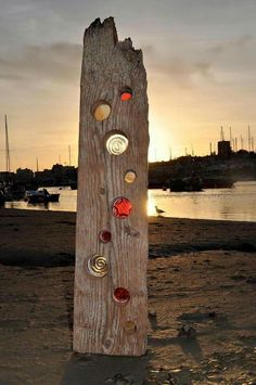 colored glass in driftwood