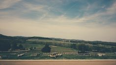 A winery on a country hill  #franklin #tennessee #vsco #spring
