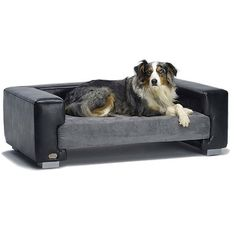 luxury dog bed How to Select Perfect Dog Beds