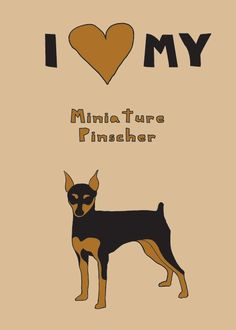 too much time on my hands...but I do love my minpin he's an accurate judge of character...if he doesn't like you, that's your fault...