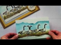 ▶ Mirror image and sponging cardmaking Techniques / Wetlands Stamp set by Stampin' Up! - YouTube