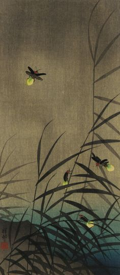 japanese firefly print - Google Search