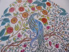 Johanna Basford, Secret Garden, Enchanted Forest, colouring in, adults, inky treasures, ink evangelist, illustrator