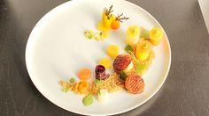 Karotte|Orange|Jakobsmuschel