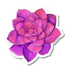 These matte die cut stickers are made from a durable vinyl with a laminate that protects them from the sun, rain and scratches! Pink Succulent, Purple Succulents, Planting Succulents, Page Borders Design, Buy Stickers, Scrapbook Frames, Watercolor Succulents, Alcohol Markers, Waterproof Stickers