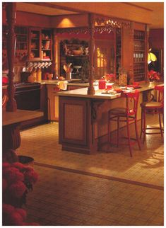 Kitchen Design and Decor, 1981