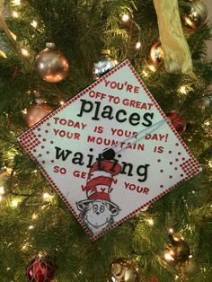 Dr. Seuss inspired graduation cap