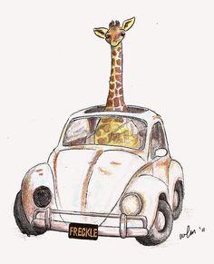 Giraffe in a Volkswagen Bug...
