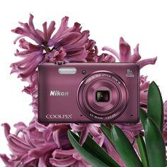Delikatne, bladofioletowe płatki kwiatów i stylowy COOLPIX S5300 to idealne połączenie dla pięknych kobiet cieszących się wiosną!
