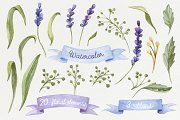 Watercolor set with Lavender Flowers - Illustrations - 2