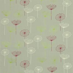 Sanderson - Traditional to contemporary, high quality designer fabrics and wallpapers | Products | British/UK Fabric and Wallpapers | Dandelion Embroidery (DOPEDA302) | Options 10 Embroideries