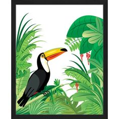 'Toucan and Tropical Rainforest' Framed Graphic Art Print Bay Isle Home Size: 53cm H x 43cm W