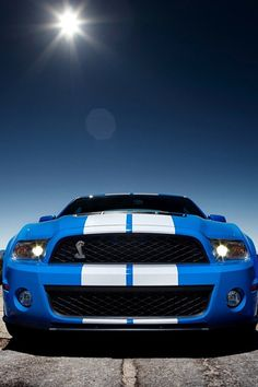 Blue Ford Shelby GT500 in My Favorite Color...