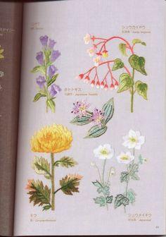 Gallery.ru / Фото #8 - Flower garden - simplehard