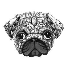 Pug 💕