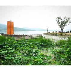 【captin_bread】さんのInstagramをピンしています。 《두물머리에서 힐링~ ヒーリング~ healing~ #일상#풍경#두물머리#숲#자연#韓国#景色#森 #instadaily#beautiful #healing #forest#강#romantic #view#힐링#ヒーリング#휴식#休み#休憩#seoul #ソウル#river#川》