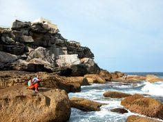 Discover the world through photos. Bondi Beach Australia, Places Ive Been, Beaches, Scenery, To Go, Community, World, Water, Travel