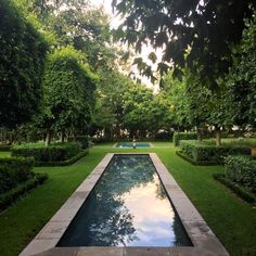 """With courage you will dare to take risks, have the strength to be compassionate and the wisdom to be humble. Courage is the foundation of integrity."" Mark Twain #garden#gardenglory#gardensofinstagram#gardenersofinstagram#greenbelt#oxygentank#trees#treesofinstagram#pond#pool#reflections#reflectionpool#grass#hedges#pig#piggy#ibis#gardenart#statue#bronze#symmetry#leaves#dusk#summer#quote#quoteoftheday#quotestoliveby#wisdom#marktwain#thislittlepiggystayedathome"