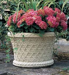 Italian Jardiniere. Lattice Planter full of colour . www.oggi.com.au