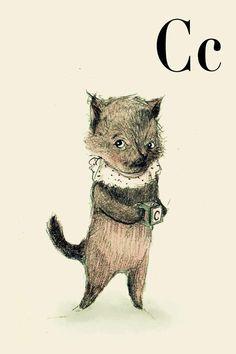 C -cat