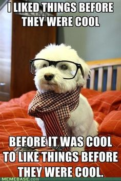 I liked things before they were cool.