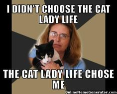 LOL! It's true! I used to be a die-hard dog-only person. Then I fostered a kitten who changed my life!