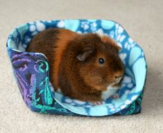 As with so many of my guinea pig sewing projects, third time is the charm. Pinniped may have approved of the last cuddle cup I made, but. Baby Guinea Pigs, Guinea Pig Care, Guinea Pig Accessories, Pet Accessories, Fleece Projects, Sewing Projects, Craft Projects, Critter Nation Cage, Guinea Pig Bedding