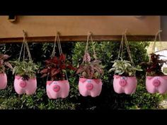 Como fazer horta com garrafa pet – Ideias Criativas – Temporada – EP 9 How to make vegetable garden with pet bottle – Creative [.What I found was this collection with over 20 genius diy plastic bottle gardens you definitely need to see. Plastic Bottle Planter, Reuse Plastic Bottles, Plastic Bottle Crafts, Diy Home Crafts, Garden Crafts, Garden Projects, Garden Art, Kids Crafts, Art Projects