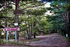#felizlunes desde #Gúdar!! ¡qué llegamos a los 20º hoy! ¿nos vamos de ruta? http://www.gudarsierraaventura.com/los-canos-de-gudar