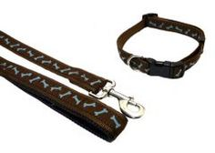 Puppy Collars and Leads :: Teal Bone -