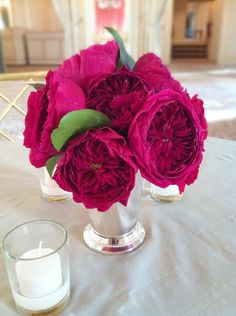 darcy garden roses - I hope the person that posted this is right. Pink Garden, Garden Roses, Pink Roses, Pink Flowers, Pink Flower Arrangements, Provence Rose, Pink Bouquet, Flower Bouquets, Rose Centerpieces