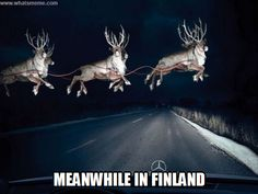 The Print Ad titled Reindeer in Headlights was done by BBDO Toronto advertising agency for Mercedes-Benz in Canada. All Things Christmas, Christmas Holidays, Merry Christmas, Christmas Ideas, Christmas Pictures, Funny Christmas, Christmas Lights, Reindeer Christmas, Blue Christmas