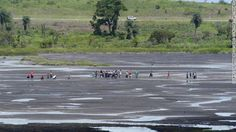Made of 10 million tons of liquid asphalt and spread over 100 acres, La Brea Pitch Lake in Trinidad is the largest natural deposit of pitch on earth.