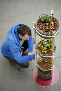 12 Plug And Play Home Hydroponics Systems | Hydroponics System, Hydroponics  And Gardens