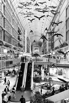 The Eaton's Centre, Yonge St., Toronto, Canada. Pantages Theater is nearby as well.  by Mr Gianni Fontana, via Flickr