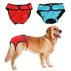 Pet Shop, Dog Heat Cycle, Female Dog In Heat, Female Dog Diapers, Dog Travel, Dog Feeding, Medium Dogs, Outdoor Dog, Dog Supplies