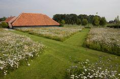 <div>Uniek schouwspel van lijnen door gebruik te maken van prachtige bloemenweides.</div><p><div><br></div><p>Volledig ontworpen door Jan Joris TuinArchitectuur alsook het prachtige zwembad en het poolhouse.</p></p>