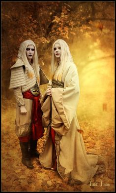 Prince Nuada and Princess Nuala Cosplay. Amazing Cosplay, Best Cosplay, Anime Cosplay, Cool Costumes, Cosplay Costumes, Golden Army, Fantasy Make Up, Steampunk Cosplay, Zombie Makeup