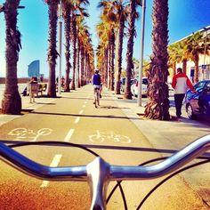 Cycling @ Barceloneta, Barcelona